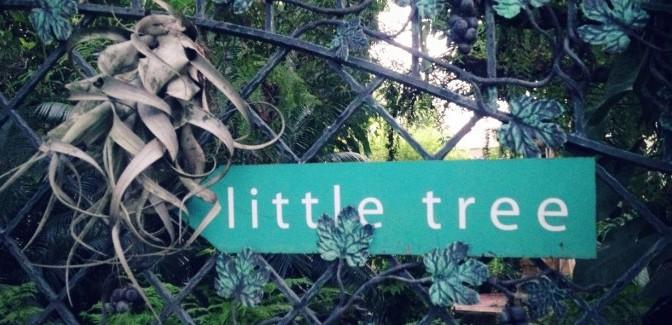 Little Tree Garden สามพราน จิบกาแฟ ชมสวนสวยดุจเทพนิยาย